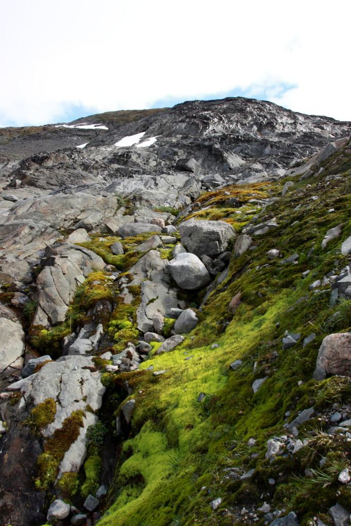 První túra - ledovec Krossbu